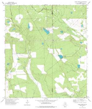 Piedra Creek Ne topo map