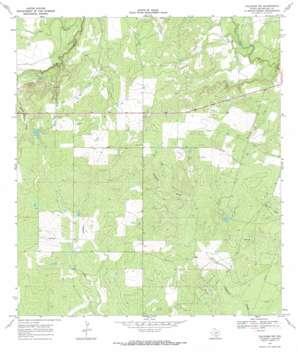 Calliham Nw topo map