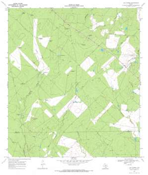 Las Flores USGS topographic map 28098f8