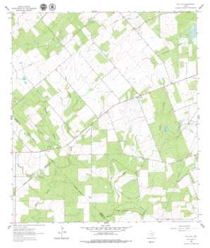 Coy City USGS topographic map 28098g1