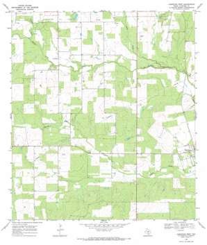 Christine West USGS topographic map 28098g5