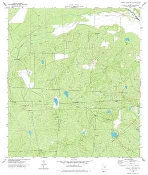Caiman Creek Se USGS topographic map 28099a1