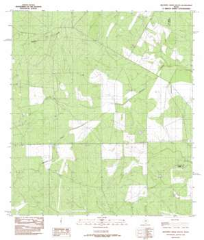 Mesteno Creek South topo map
