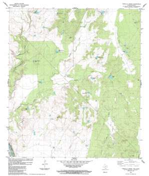 Tordillo Creek USGS topographic map 28099a8