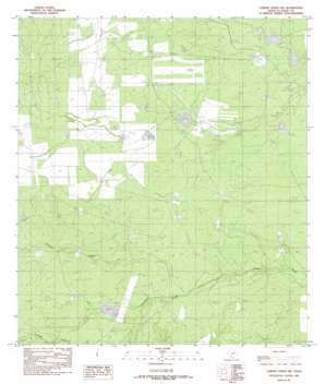 Caiman Creek Nw USGS topographic map 28099b2