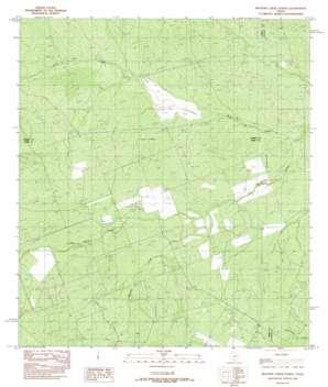 Mesteno Creek North topo map