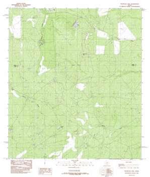 Piloncillo Hill topo map