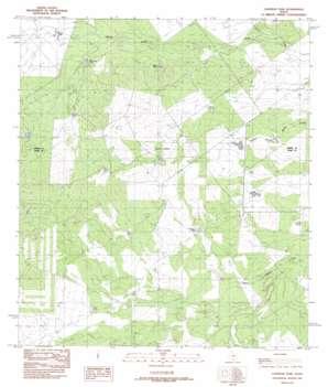 Landrum Tank USGS topographic map 28099b7