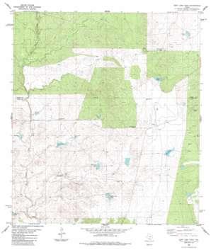 East Losa Tank USGS topographic map 28099b8