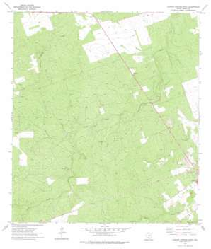 Carrizo Springs West USGS topographic map 28099e8