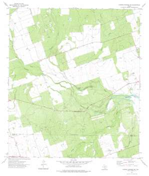 Carrizo Springs Nw USGS topographic map 28099f8