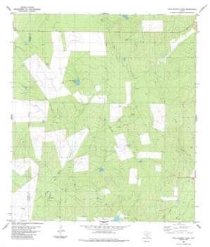 Palo Blanco Tank USGS topographic map 28100d1