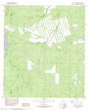 Cayetano Creek USGS topographic map 28100e1