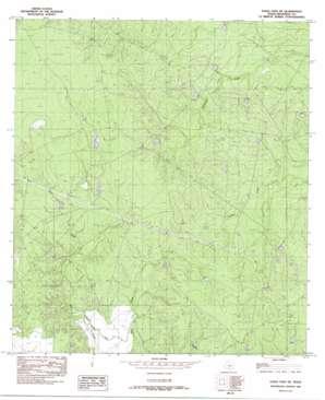 Eagle Pass Ne USGS topographic map 28100f3
