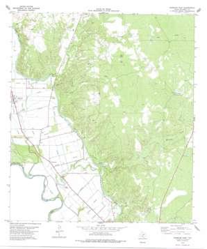 Quemado East USGS topographic map 28100h5