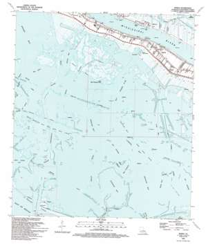 Buras USGS topographic map 29089c5