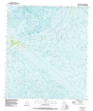 Lena Lagoon USGS topographic map 29089g5