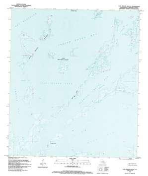 Oak Mound Bayou USGS topographic map 29089h3