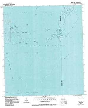 Jacko Bay USGS topographic map 29090b4