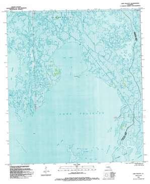 Lake Felicity topo map