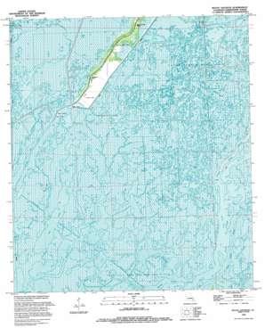 Bayou Sauveur topo map