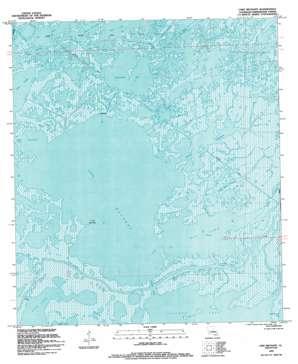 Lake Mechant USGS topographic map 29090c8