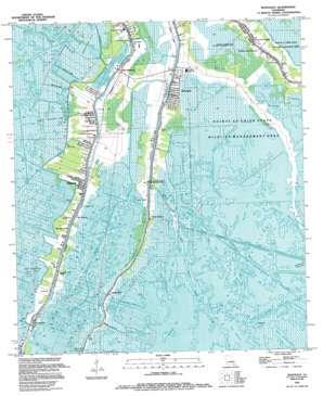 Montegut USGS topographic map 29090d5