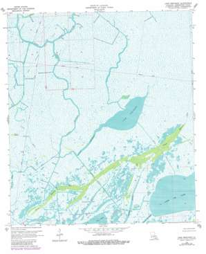 Lake Penchant USGS topographic map 29090d8