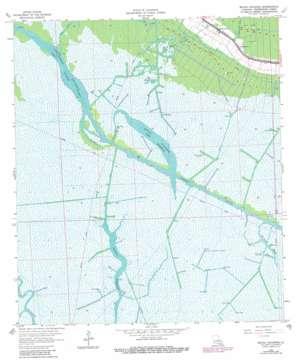 Bayou Cocodrie topo map