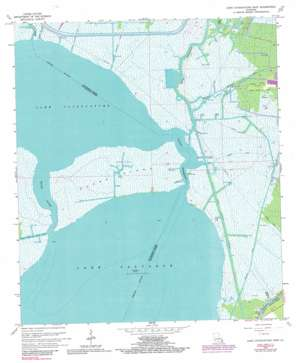 Lake Cataouatche East USGS topographic map 29090g2