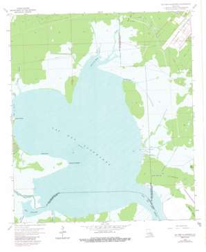 Lac Des Allemands USGS topographic map 29090h5