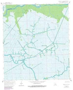 Morgan City USGS topographic map 29091e1