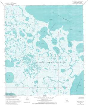 Bayou Blanc USGS topographic map 29091e7