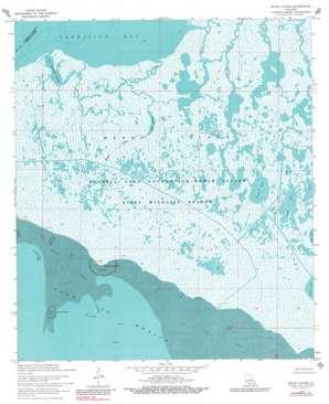 Bayou Lucien topo map