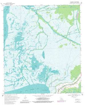 Ellerslie USGS topographic map 29091f5