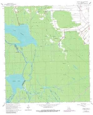 Grassy Lake USGS topographic map 29091g1