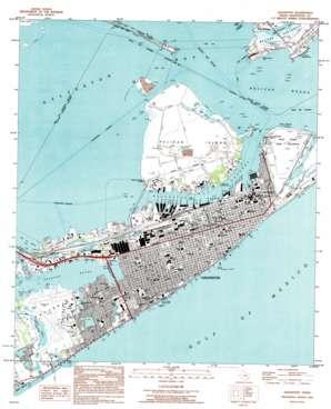 Galveston topo map