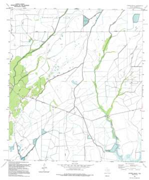 Oyster Bayou USGS topographic map 29094f5