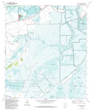 Big Hill Bayou USGS topographic map 29094g1