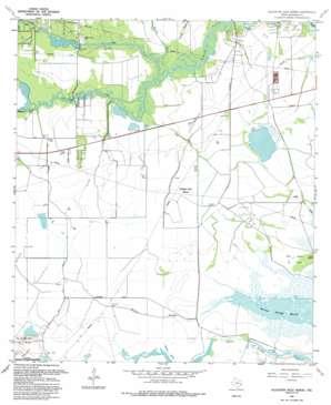 Alligator Hole Marsh topo map
