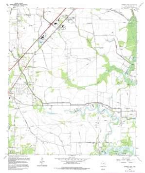 Fannett East topo map
