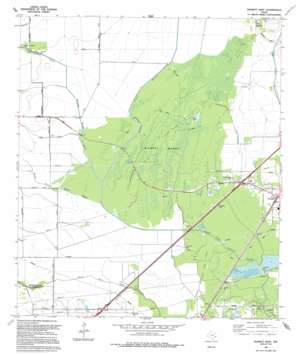 Fannett West USGS topographic map 29094h3