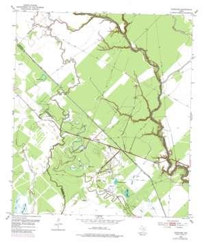 Danciger topo map