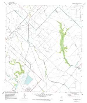 Mustang Bayou topo map