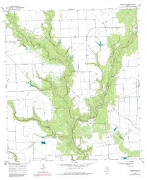 Ganado Ne USGS topographic map 29096b5