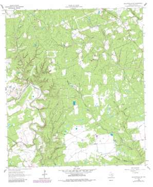 Hallettsville Se USGS topographic map 29096c7