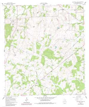Blackwell Lake USGS topographic map 29097a4