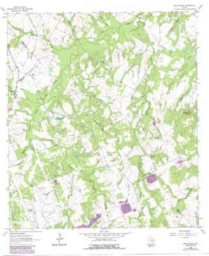 Bald Mound USGS topographic map 29097b6