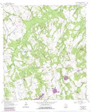 Bald Mound topo map