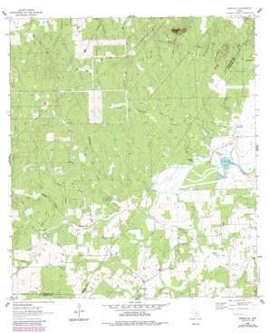 Dewville USGS topographic map 29097d7